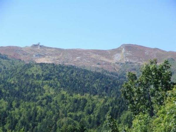 Chalet in Toscana Abetone Boscolungo