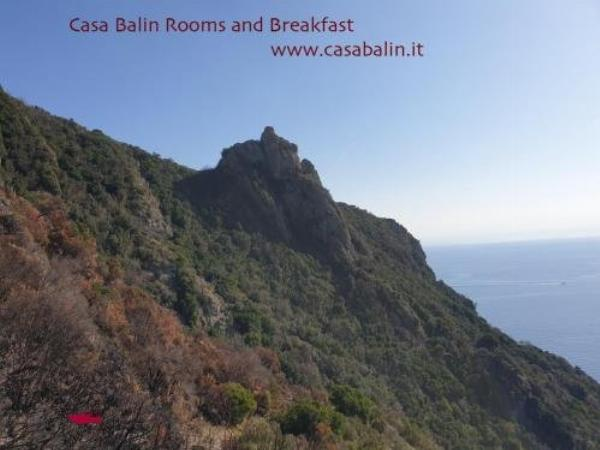 Rooms and Breakfast Casa Balin Faveto