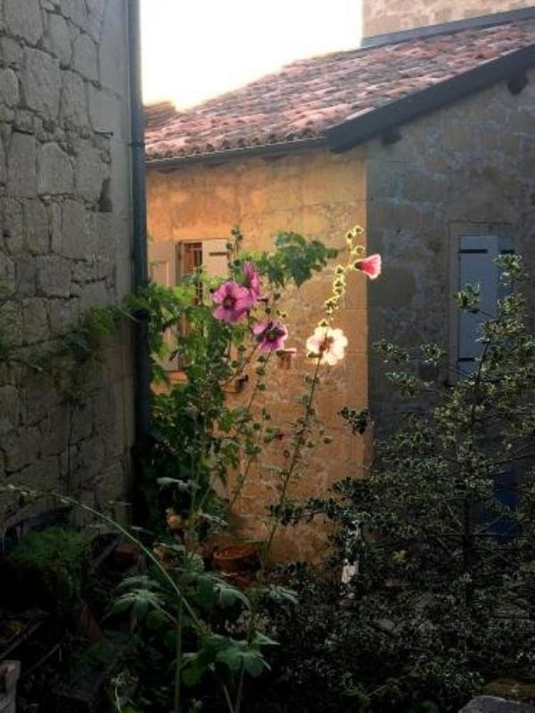B&B Antico Mulino Castel di Casio